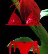 TULIP Rosso 2